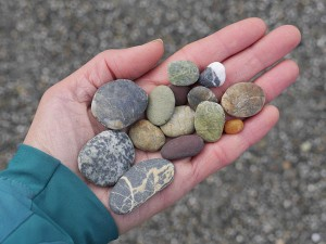 My collection of stones at the agate beach at Big Lagoon.