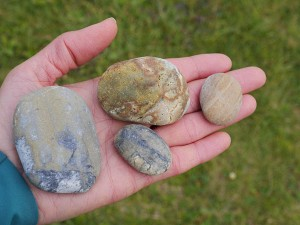 Some stones from the Agate Beach at Big Lagoon.